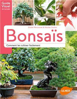 BONSAIS Comment les cultiver facilement