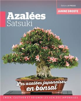 Azalées Satsuki, les azalées japonaises en bonsai