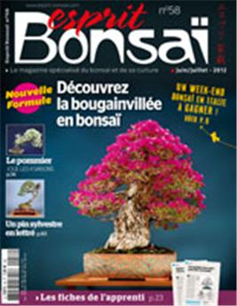 Esprit-Bonsaï n° 058