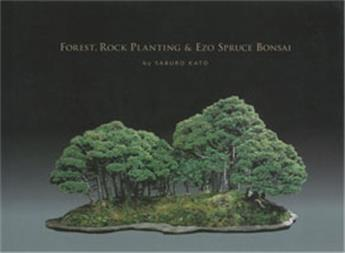 Forest, rock planting and Ezo spruce bonsaï