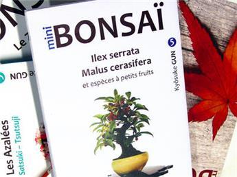 Mini Bonsaï - Ilex, malus et petits fruits