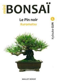 Mini Bonsaï - Le Pin noir Kuromatsu