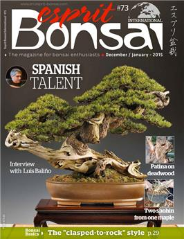 Esprit Bonsai International #73 Dec-Jan 2015