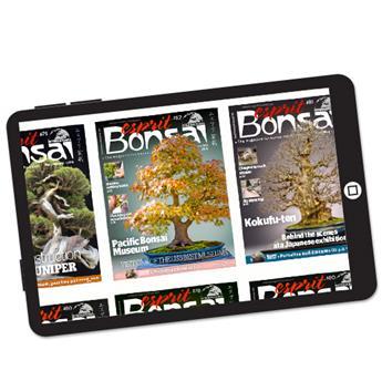 Abonnement Esprit Bonsai International version numérique