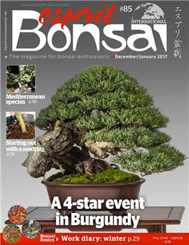 Esprit Bonsai International #85 Dec-Jan 2017