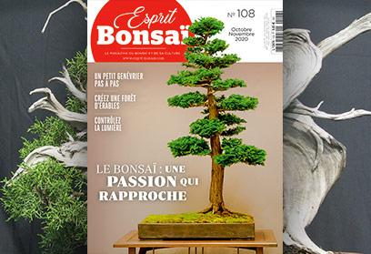 Esprit Bonsaï n°108 Octobre-Novembre 2020 Le bonsaï, une passion qui rapproche