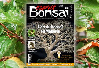 Esprit Bonsaï n°83 Août-Septembre 2016 - Visites d'expositions européennes