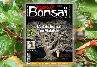 Esprit Bonsaï n°84 Octobre Novembre 2016 - L'art du bonsaï en Malaisie